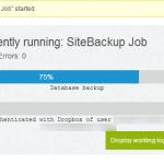 running-backup-job1